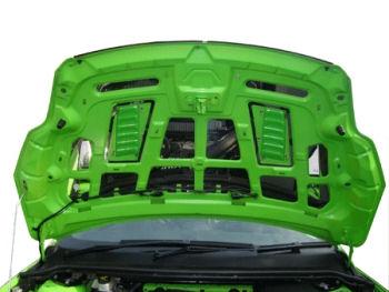 en présentant nombreux dans la variété courir chaussures Polished Under Bonnet Plate Kit Focus RS Mk2 - Auto ...